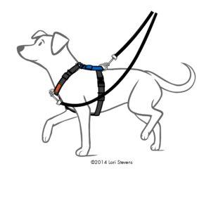 lili-leash
