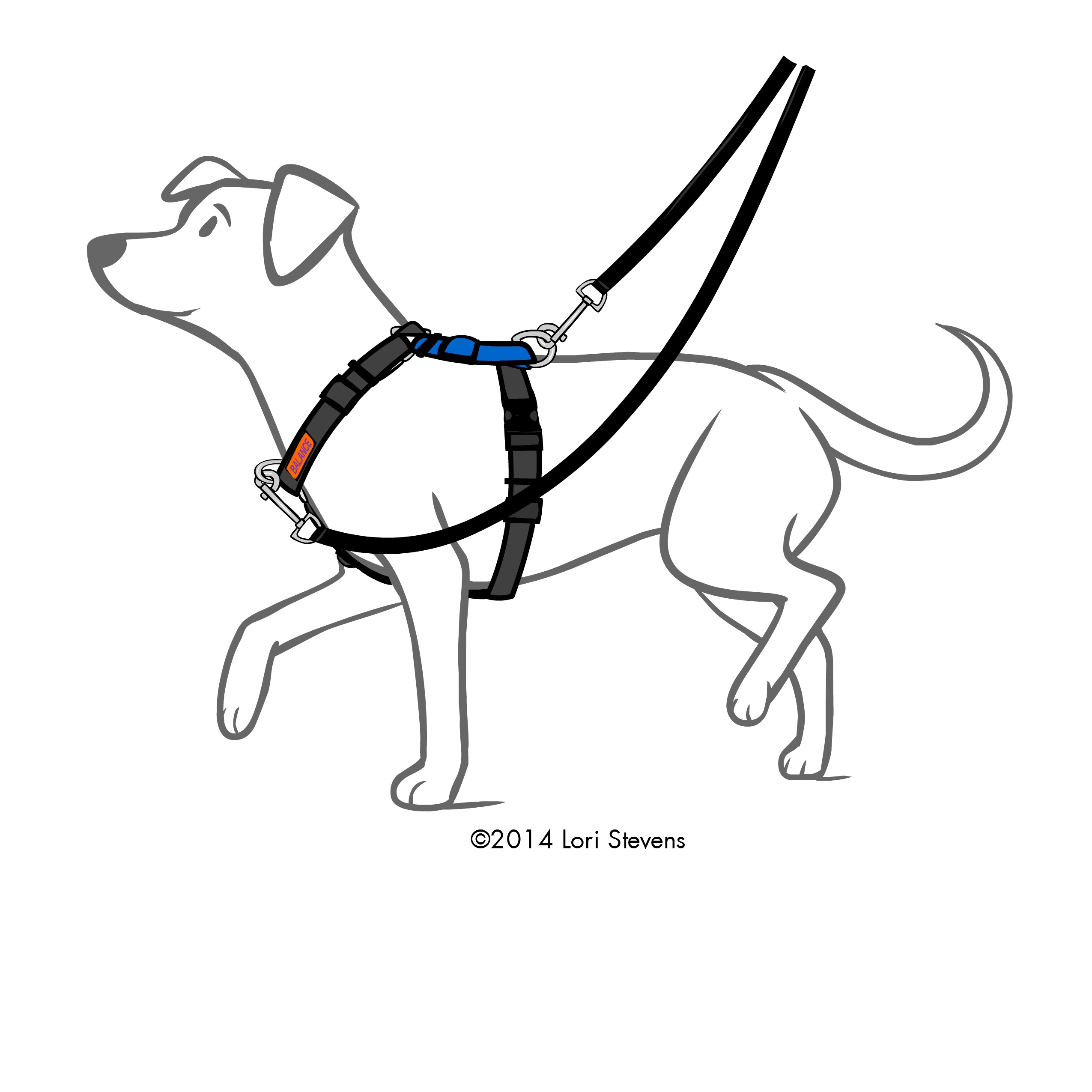 Balance Harness Seattle Ttouch
